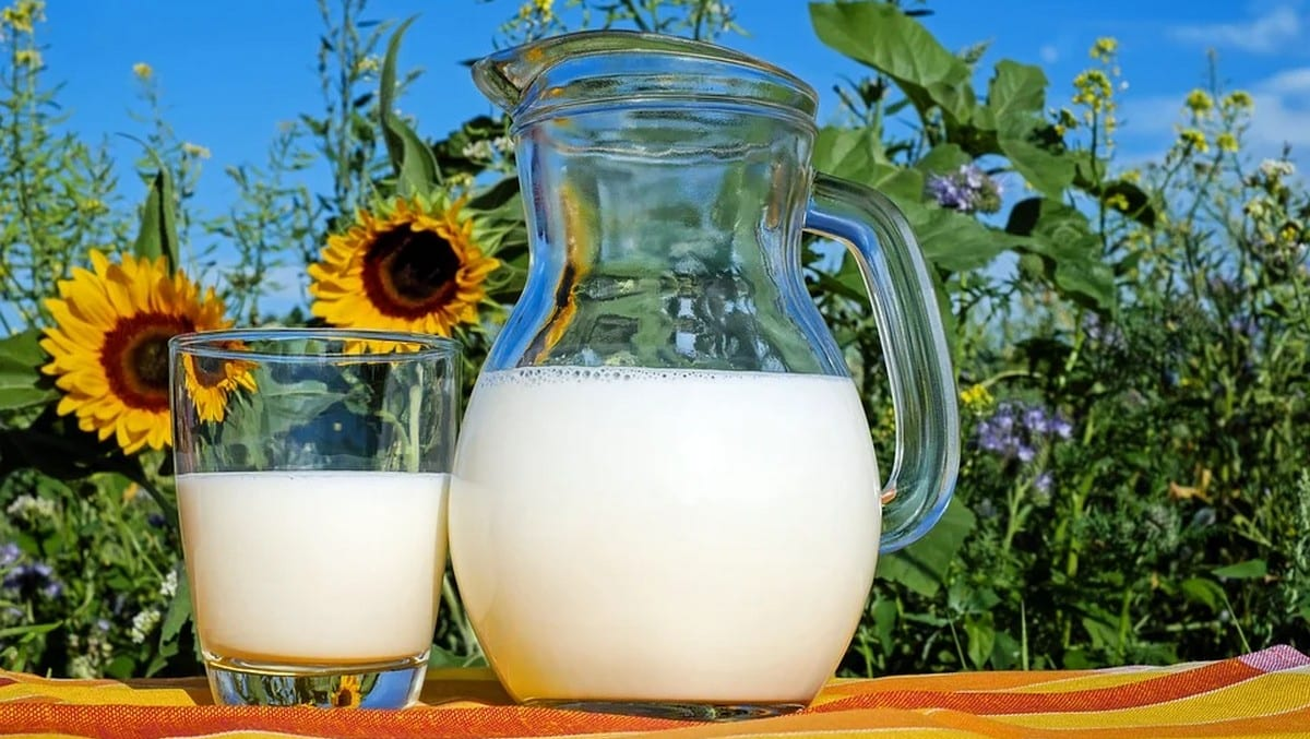 Lidl célèbre les éleveurs français pour la Journée mondiale du lait !
