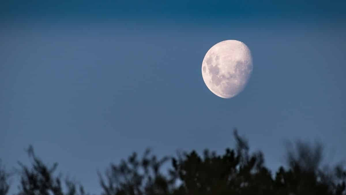 Astrologie tout savoir sur la Nouvelle Lune en Cancer du 10 juillet !