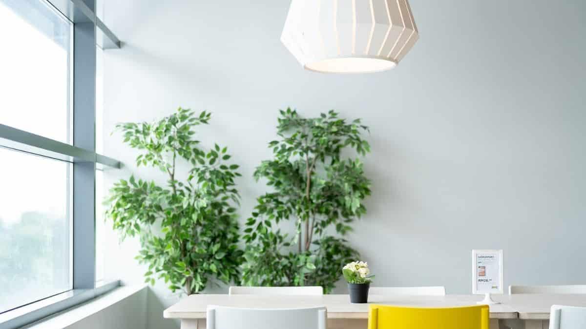 Ikea dévoile son incroyable coaching maison à petit prix !