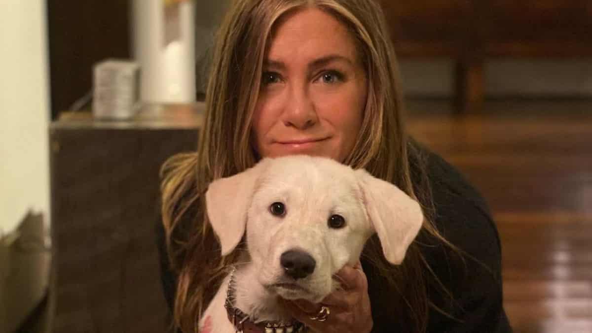 Jennifer Aniston en couple avec l'ex de Halle Berry Gabriel Aubry ?