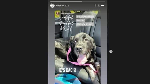 Laeticia Hallyday informe sur la santé du chien de Johnny Hallyday !