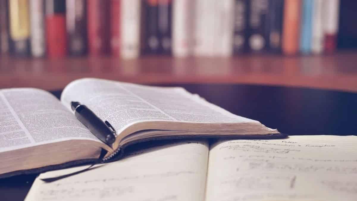 Campus: les jeunes ravis de pouvoir reprendre leurs révisions à la BU !