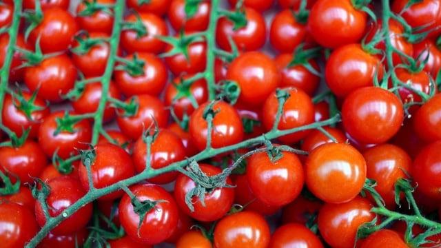 Lidl: Top 10 des fruits et légumes de saison à manger cet été !