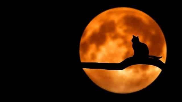 Astrologie: la Pleine Lune va chambouler ces 4 signes astro !
