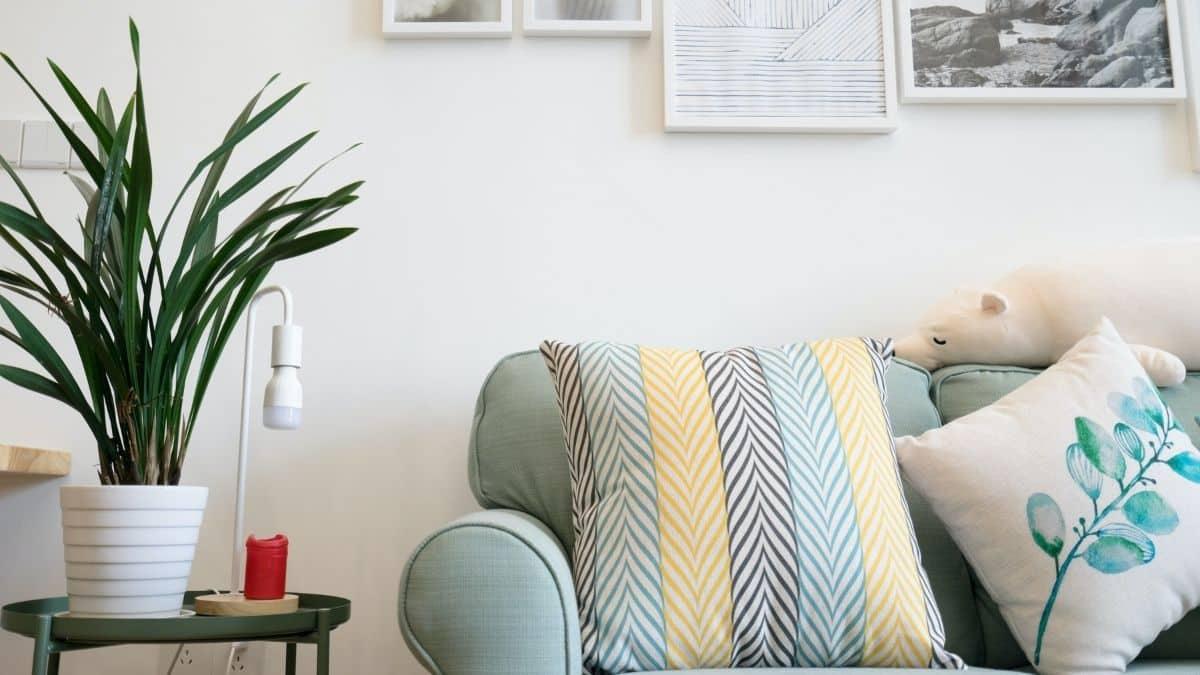 Etudiant: des meubles gratuits bientôt mis à disposition des jeunes ?